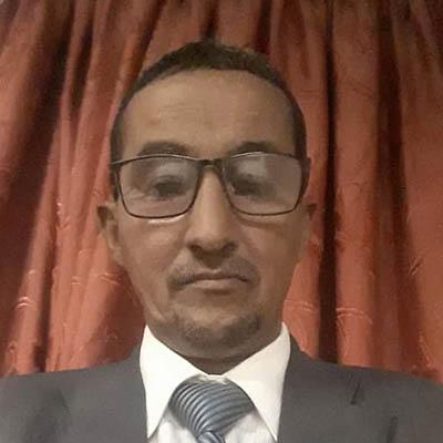 محمد يحي المامي